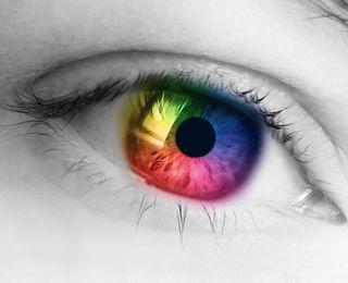 色と自律神経