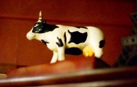 店内のいたるところで見かける牛のグッズ
